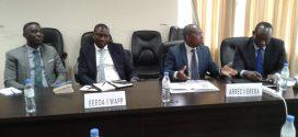 Marché régional de l'électricité : La CEDEAO sensibilise les acteurs